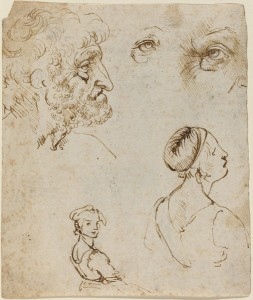 Leonardo da Vinci<br /><i>Sheet of Studies</i> [recto], probably 1470/1481<br />Pen and brown ink over black chalk on laid paper, 16.4 x 13.9 cm (6 7/16 x 5 1/2 in.)<br />National Gallery of Art, Washington, DC, The Armand Hammer Collection<br />Image courtesy of the Board of Trustees, National Gallery of Art